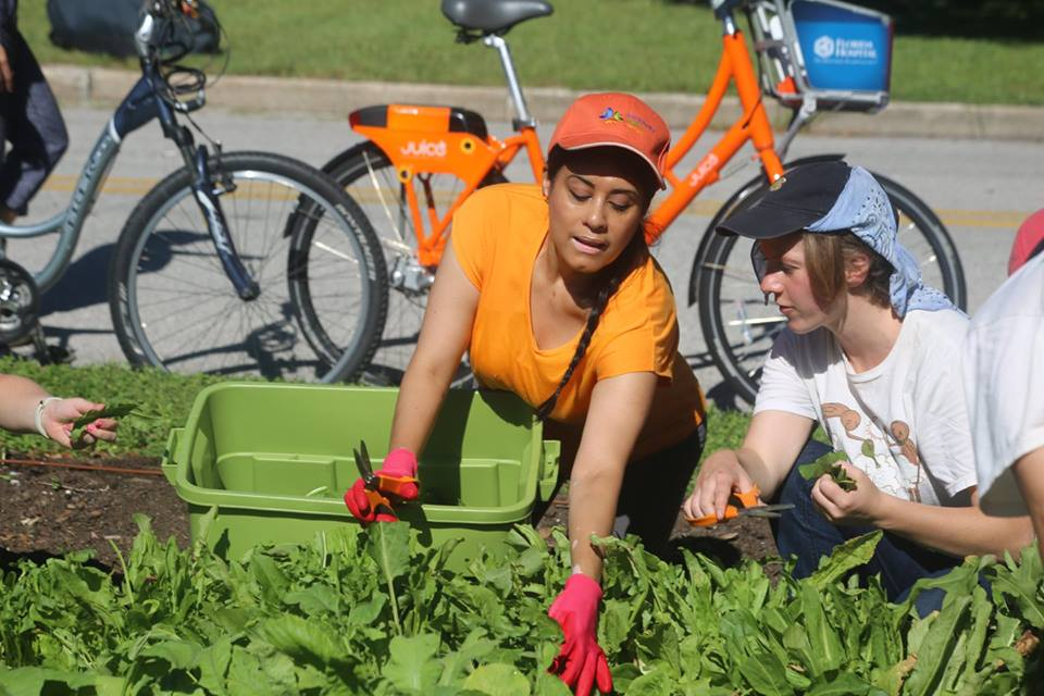 """ORANGE COUNTY, Fla. (FNN NEWS) - The Honorable Daisy Morales, an elected Supervisor with Florida's Orange Soil and Water Conservation District states: """"Soil is an essential ingredient to healthy food and nutrition."""" Photo by Willie David/Florida National News."""