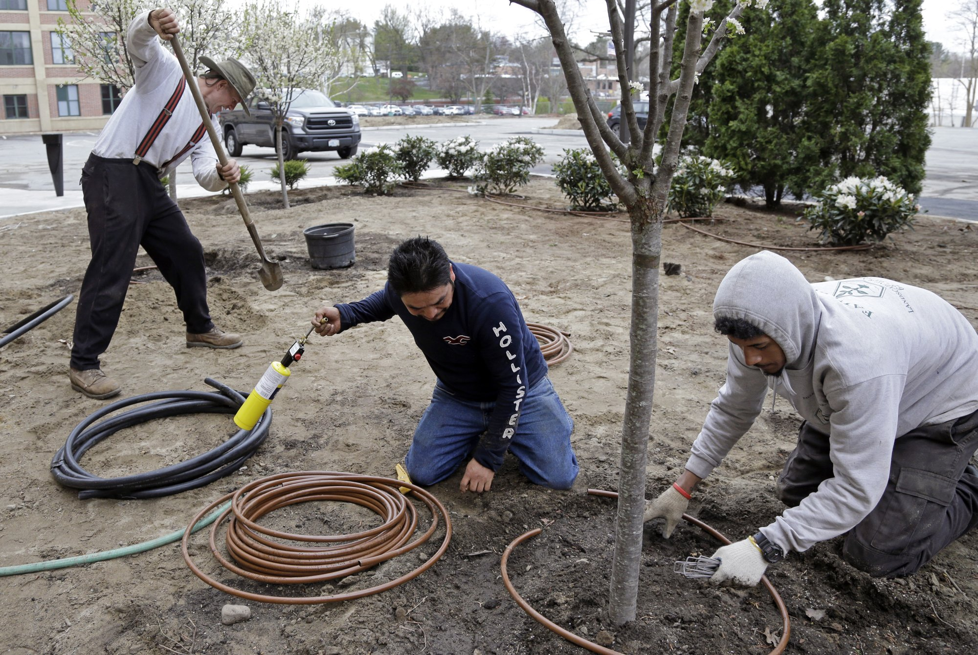 In this April 25, 2017 photo, Stephen Faulkner, far left, owner of Faulkner's Landscaping & Nursery, installs an irrigation system alongside workers Gonsalo Garcia, center, and Jalen Murchison, right, at a landscape project in Manchester, N.H. The Trump Administration is making 30,000 more temporary visas available for seasonal work through the end of September. According to a copy of the rule obtained by The Associated Press, the visas, known as H2-Bs, will go to foreign workers who have held them before over the last three fiscal years for jobs like picking crabs, shucking oysters or seasonal hotel work. They will become available when the temporary rule is published as early as Tuesday. (AP Photo/Elise Amendola)