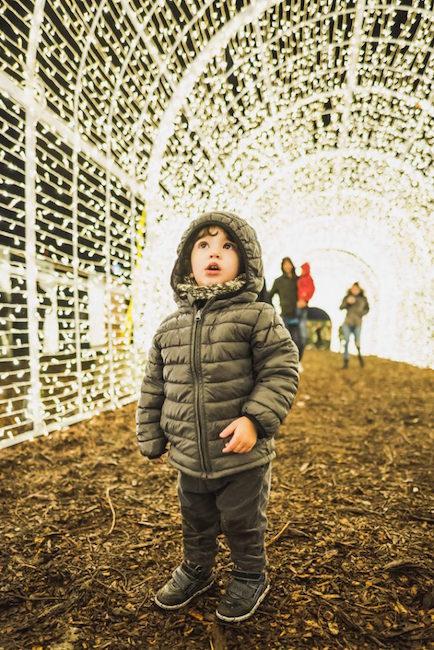 St. Pete's Enchant® Christmas maze has taken over Tropicana Field. Photo courtesy of Enchant.