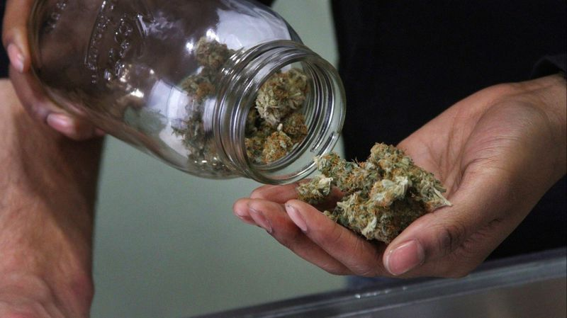 Medical marijuana. Photo: Mark Thiessen/AP.