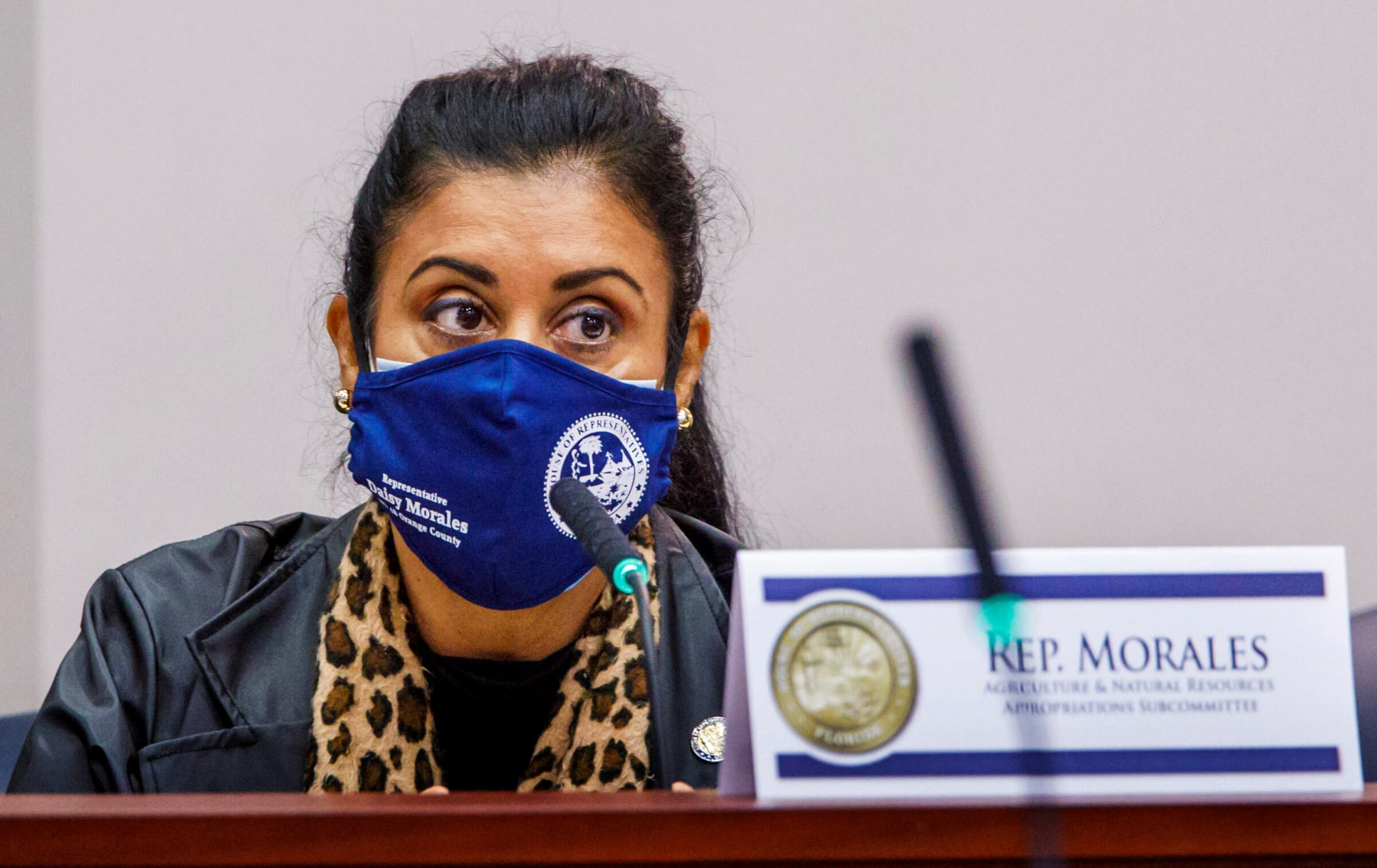 State Rep. Daisy Morales participates in a committee meeting in the State Capitol in Tallahassee during the 2021 Legislative Session. Photo courtesy of Florida Politics.